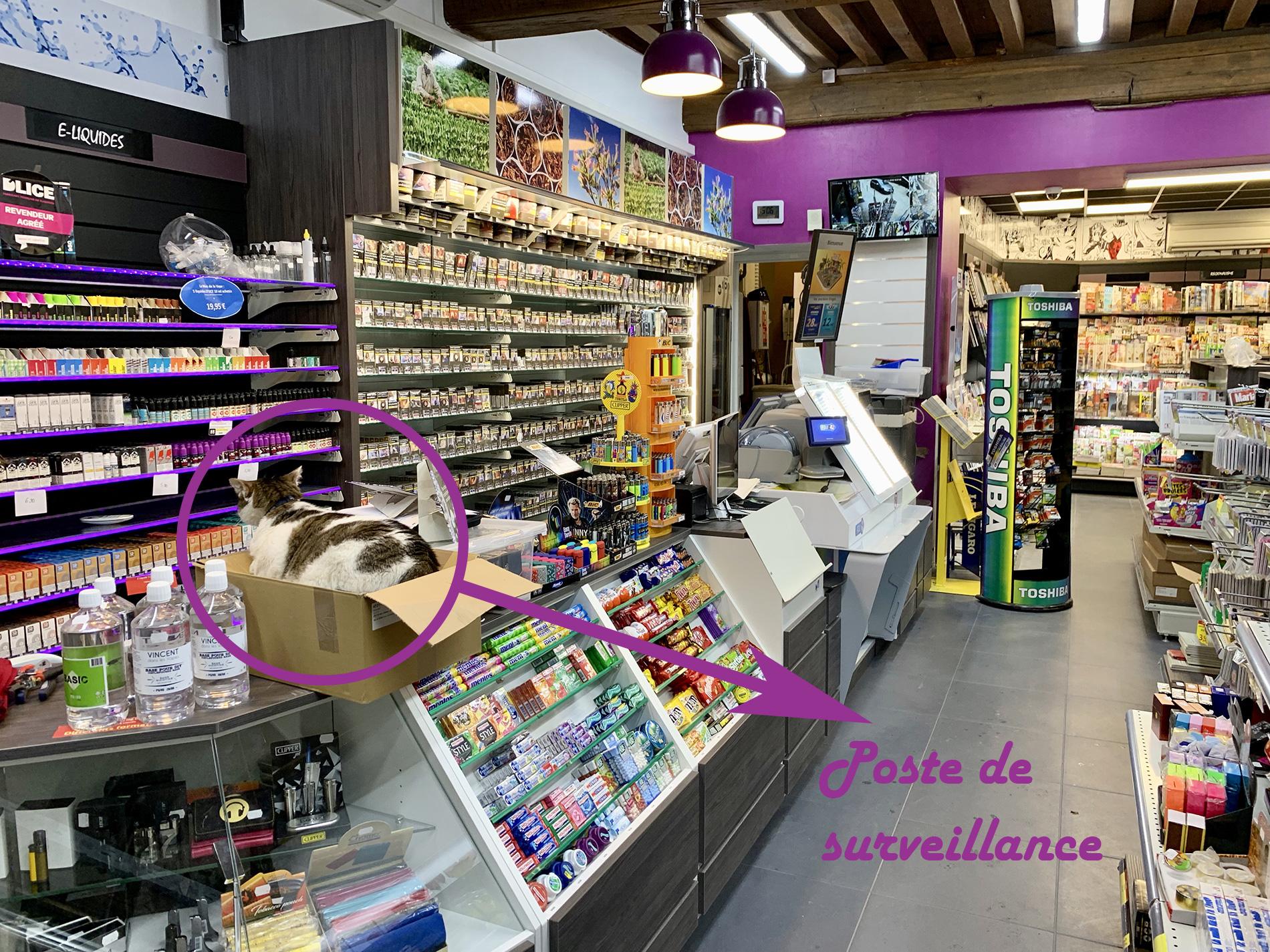 nuits-st-georges-ligne-caisse-linéaires-tabac-vape/a2m diffusion